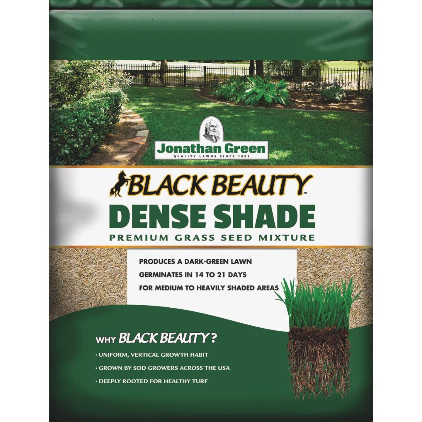 Jonathan Green Black Beauty 3 Lb. 900 Sq. Ft. Coverage Dense Shade Grass Seed Image 1